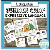 Summer Camp Expressive Language Game