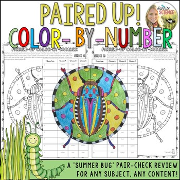 Summer Color by Number Review Pair Check Activity