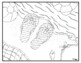 Summer Coloring Page Collection