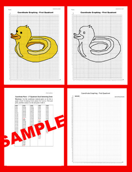 Summer Coordinate Graphing Picture: Duck Swimming Circle