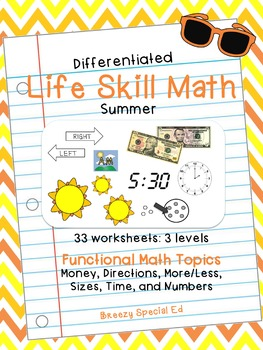 Summer Differentiated Life Skill Math Pack for Special Education