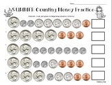 Summer / End of Year Counting Money Practice Worksheet