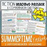 Summer Fiction Reading Passage FREEBIE