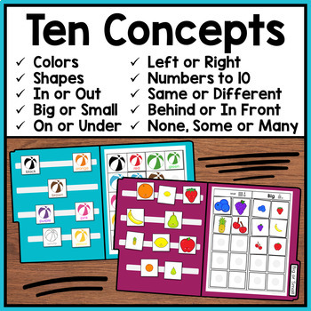 Summer File Folder Activities: Basic Concepts (Special Education)