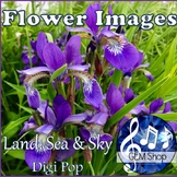 BACKGROUND PAPERS: Summer Flower Images, All Subjects & Science Clip Art
