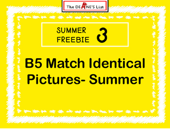 Summer Freebie 3:  B5 Matching identical pictures- summer theme sample