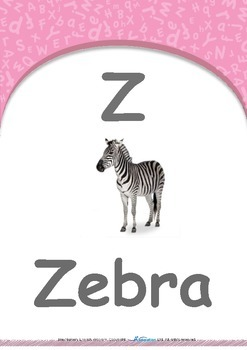 Summer Fun - Butterflies : Letter Z : Zebra - Pre-Nursery (1 year old)