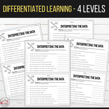 Summer Graphing and Interpreting Data - Differentiated Worksheets
