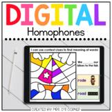 Summer Homophones Digital Activity | Distance Learning