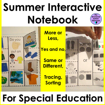 Summer Basic Concepts Core Word Interactive Notebook for Special Education