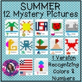 Summer Mystery Pictures- Hundreds Chart Recognizing Colors