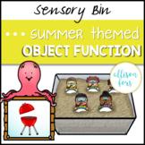 Summer Object Function Sensory Bin Speech Therapy