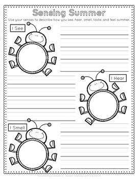 Summer Observation Journal