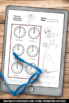 Telling Time Worksheets, Summer Math Packet, Summer Olympics Math Theme