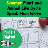 Summer Life Cycle Speak then Write Print and Digital