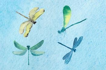 Summer Pond - Watercolor Clip Art
