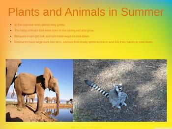 Summer PowerPoint