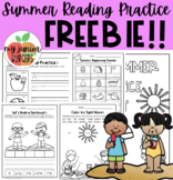 Summer Review Reading Packet FREEBIE!!!