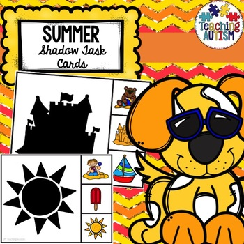 Summer Shadow Matching Task Cards