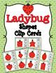 Summer Shapes Clip Cards Bundle