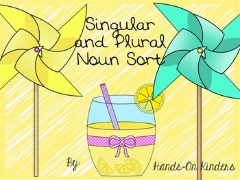 Summer Singular and Plural Noun Sort