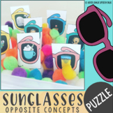 Summer Sunglasses Basic Concepts, Opposite, and Antonym Se