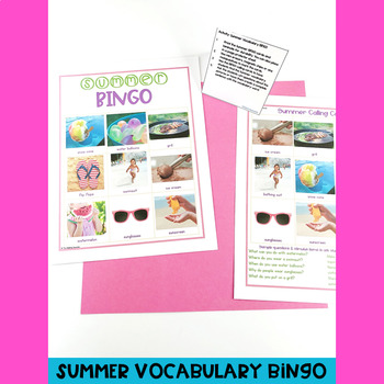 Summer Themed PUSH-IN Language Lesson Plan Guides