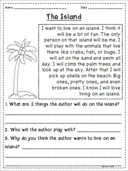 Summer Themed Reading Passages *JUST PRINT & TEACH!*