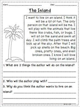 Summer Themed Reading Passages *JUST PRINT & TEACH!*