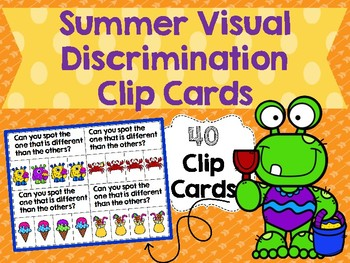 Summer Visual Discrimination Clip Cards