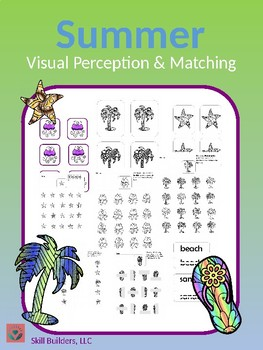 Summer Visual Scanning and Matching