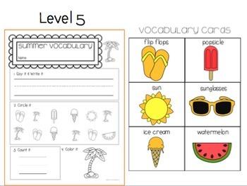 Summer Vocab Worksheets: Special Ed No Prep Printable Pack