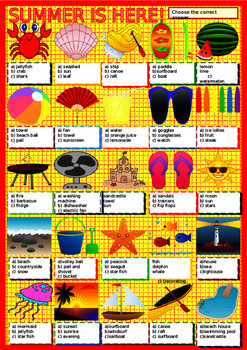 Summer Vocabulary Summer Holidays Powerpoint and Double Comparative