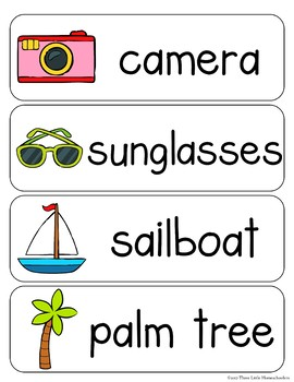 Summer Vocabulary Word Wall Cards plus Write & Wipe Version