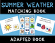 Summer Weather Language Bundle with Adapted Books