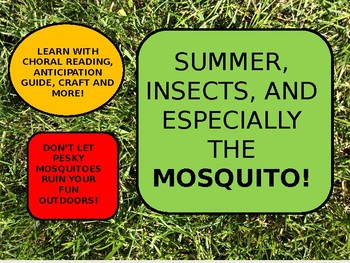 Summer and Mosquitoes