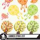 Summer citrus clipart set