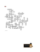 Summer of the Monkeys: Reading-for-Detail Crossword—50 Clues!