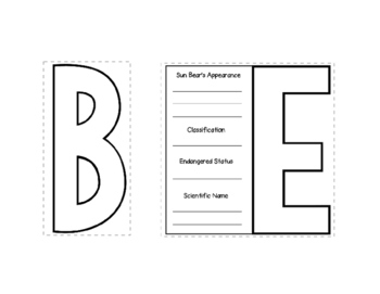 Sun Bear Webquest Layered Book
