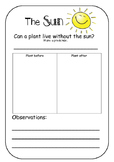Sun Experiment- plant needs