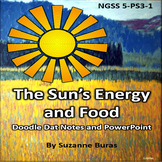 Sun's Energy and Food:  Doodle Dat Notes and PowerPoint Presentation