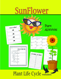 SunFlower Plant Activities (Plant Life Cycle Worksheet)