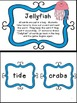 Sunburn & Jellyfish - two vocabulary games with a beach theme