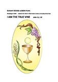 Sunday School Lesson: I AM THE TRUE VINE  John 15  1-8