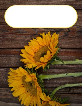 Sunflower Binder Cover