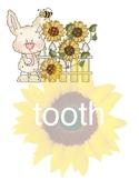 Sunflower COMPOUND WORDS Activity (set 1)