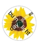 Sunflower COMPOUND WORDS Activity (set 2)