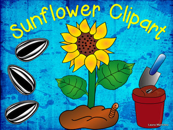 Sunflower Clipart: Life Cycle and Parts