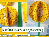 Sunflower Craft: {3-D Life Cycle of a Sunflower Craftivity} Plant Life Cycle