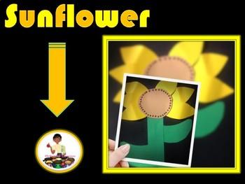 Sunflower Craft and Writing